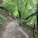 Een leuke weg (2)